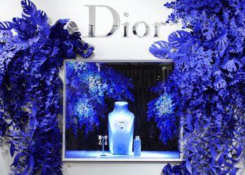 El universo de papel de Wanda Barcelona. Proyecto para Dior.