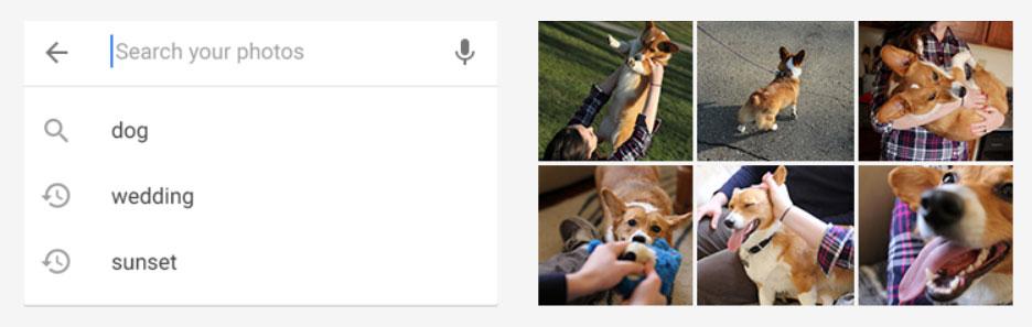 buscar objeto en fotos con Google Photo